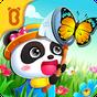 Acampamento do Pequeno Panda 8.25.10.01