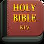 NIV Bible Offline free 1.0