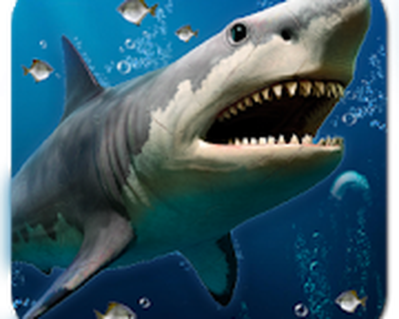 3d Ocean Live Wallpaper For Free Android Free Download
