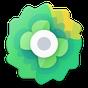 Moxy Icons 6.2