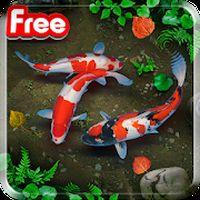 KOI Lucky Fish Live Wallpaper apk icon