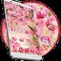 Pink Summer Flower Theme 1.1.3