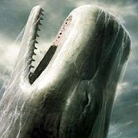 Icoană apk Balena Ucigasa LWP