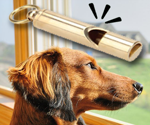 Dog Whistle Soundboard: Bark Sounds Android - Free