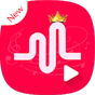 Musicaly HD Video Player 1.0.1 APK