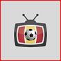 TDT Futbol TV 22.0 APK