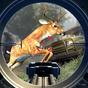 Safari Hunt 2018 1.4