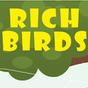 RichBirds 1.0