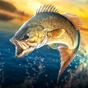 Fishing Hook : Bass Tournament 1.1.9