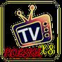 TV POLSKA X8 8.2 APK
