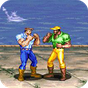 Dinosaurs Fighter  APK