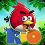 Angry Birds Rio 2.6.11
