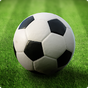 Thế giới Football League 1.9.4