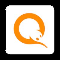 Visa QIWI Wallet icon