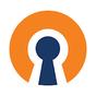 OpenVPN Connect 3.1.0