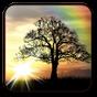 Sun Rise Free Live Wallpaper 4.8.3
