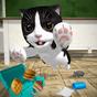 Cat Simulator - and friends  3.3.18