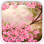 Flores de Primavera Papel 5.0