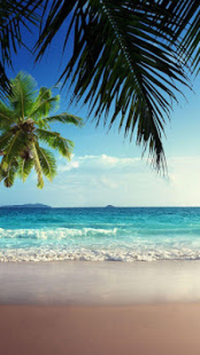 Spiaggia Sfondo Animato 50 Download Gratis Android
