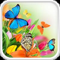 Kelebek Canlı Duvar Kağıdı Simgesi