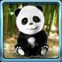 Panda Falar 1.4.3