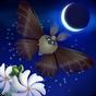 Flutter: Starlight 1.48