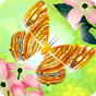 Flutter: Butterfly Sanctuary 2.75