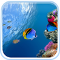 Ocean Fish Live Wallpaper 5.0