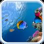 Peixe oceânico Papel de Parede 5.0