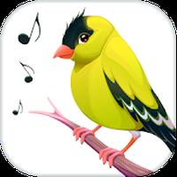 richiami uccelli gratis