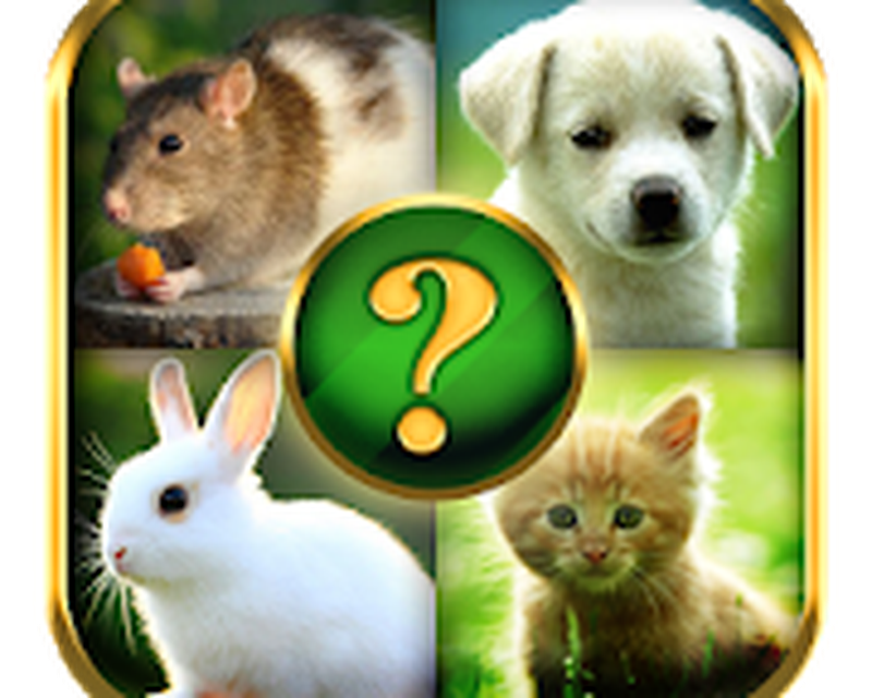 Animals Quiz Android - Free Download Animals Quiz App - Cooler