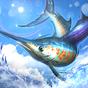 Fishing Championship 1.2.6