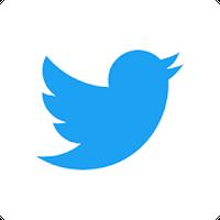 Ikona Twitter Lite