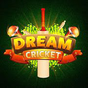 Dream Cricket - Best Game Of 2018 1.6