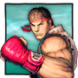 Street Fighter IV Champion Edition 1.01.02