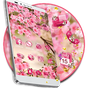 Pink Summer Flower Theme 1.1.5