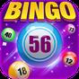 Bingo Happy : Casino  Board Bingo Games Free & Fun 1.10