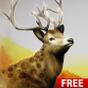 Hunting Challenge 1.7