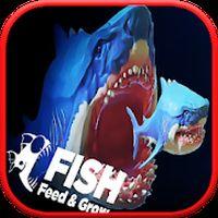 ไอคอน APK ของ Feed and grow shark fish