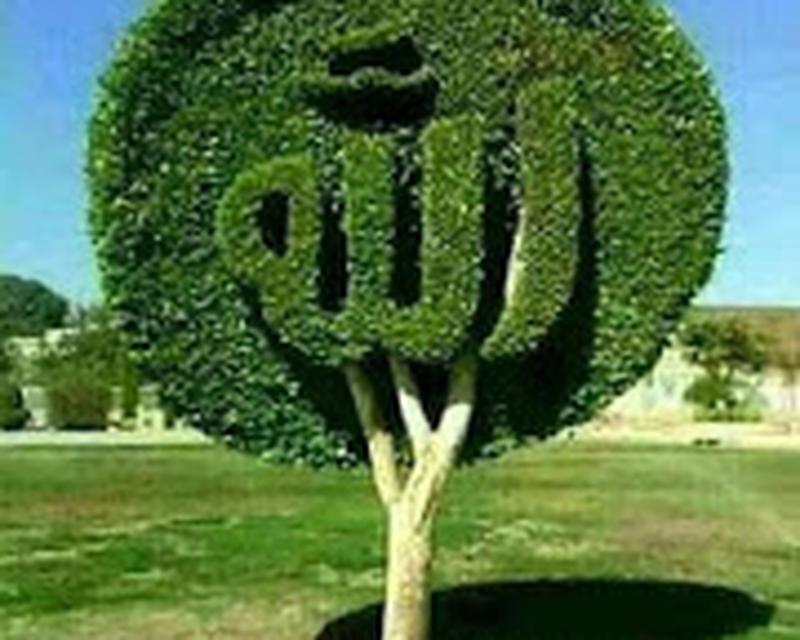 Kaligrafi Wallpaper Android Free Download Kaligrafi
