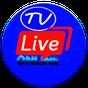 TV Indonesia - Semua Saluran TV Online Indonesia 1.2