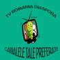 TV ROMANIA DIASPORA 3.1.10 APK