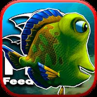feed and grow - fish APK Icon