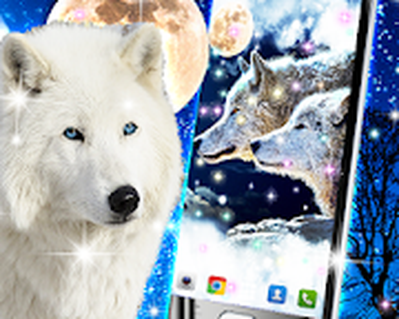 Wolf Live Wallpaper Android Free Download Wolf Live