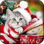 New Year HD (backgrounds & themes) 3.0