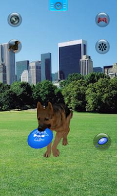 Free Talking Pet App