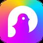 Pokekara(ポケカラ)-完全無料カラオケ採点アプリ 1.0.11