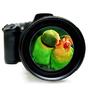 3DズームHDカメラ  1.0