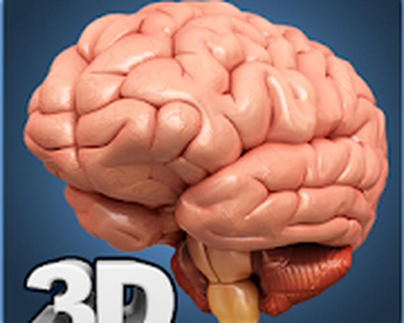 Brain Anatomy Pro Android Free Download Brain Anatomy Pro App