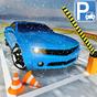 La neve Auto Parcheggio Vero Guida Scuola Parchegg 1.0